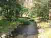 Casio0329_010